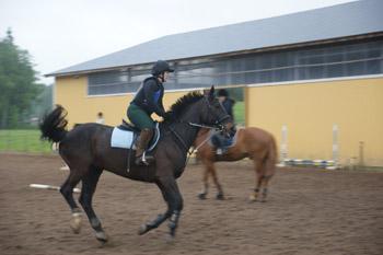 Nainen ratsastaa tummanruskealla hevosella.