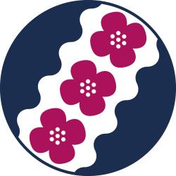 Tampereen seudun Näkövammaisten logo, kolme annansilmää ja Tammerkosken aallot